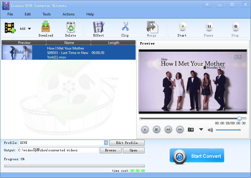 Lionsea DIVX Converter Ultimate full screenshot