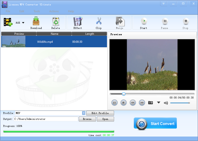 MP4 Converter is skilled in converting MP4.
